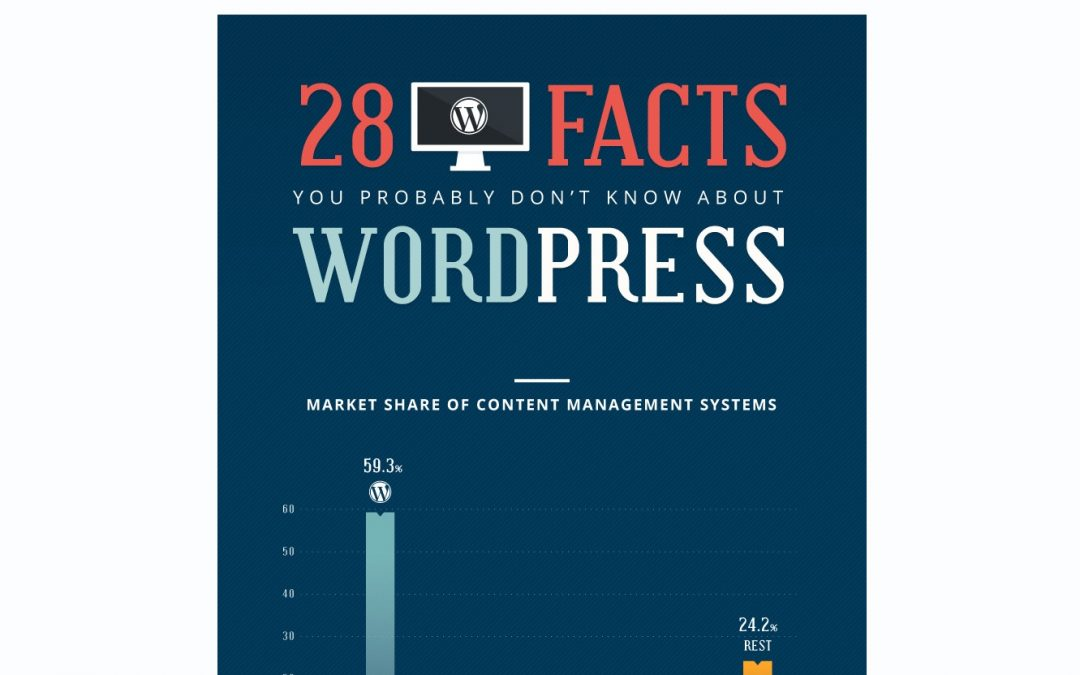 "Review of ""28 Facts You Probably Don't Know About WordPress"" infographic"